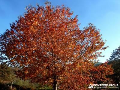 Ancares lucenses; viaje Puente noviembre; viajes organizados desde madrid viajes de naturaleza